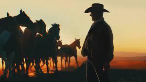 Meine Helden waren Cowboys